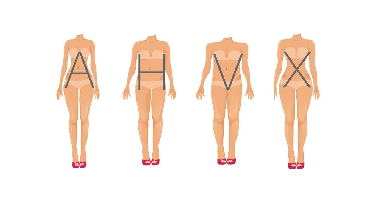 morphologie des femme